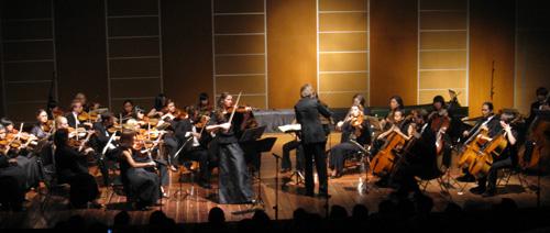 Cappella Amadeus Tubingen Kammerorchester